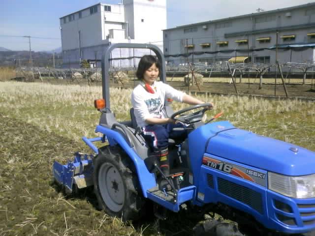 トラクターの耕運3